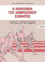 Η ΑΝΑΤΟΜΙΑ ΤΟΥ ΑΝΘΡΩΠΙΝΟΥ ΣΩΜΑΤΟΣ. Φυσιοθεραπεία - Ανατομία - Φυσιολογία - Ανατομία