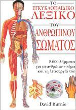 ΤΟ ΕΓΚΥΚΛΟΠΑΙΔΙΚΟ ΛΕΞΙΚΟ ΤΟΥ ΑΝΘΡΩΠΙΝΟΥ ΣΩΜΑΤΟΣ. Αθλητικές επιστήμες - Αθλητικά λεξικά -