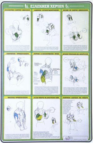 ΕΞΑΣΚΗΣΗ ΧΕΡΙΩΝ [ΑΦΙΣΑ νο11]. Αφίσες - Χάρτες -  -