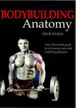 BODYBUILDING ANATOMY. Fitness - Bodybuilding -