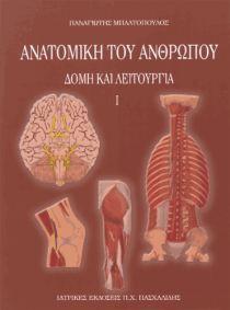 anatomiki-tou-anthropou-i