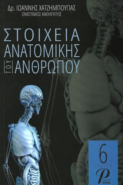 stixia_anatomikis
