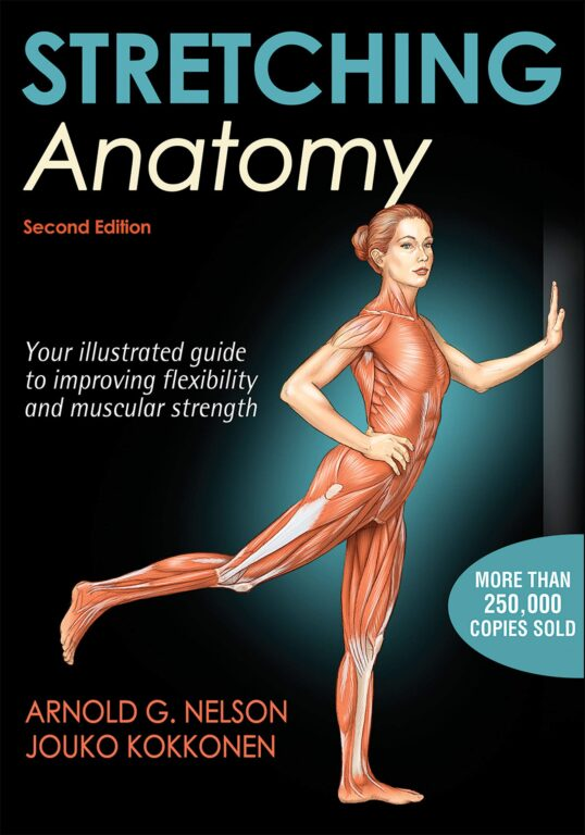 stretching-anatomy